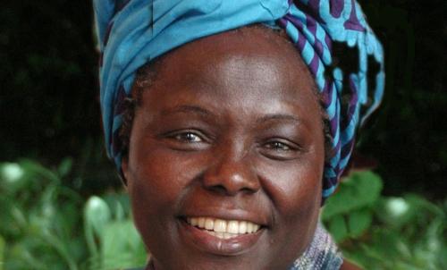 Asturias con niños: Danza en Gijón: Wangari, la niña árbol