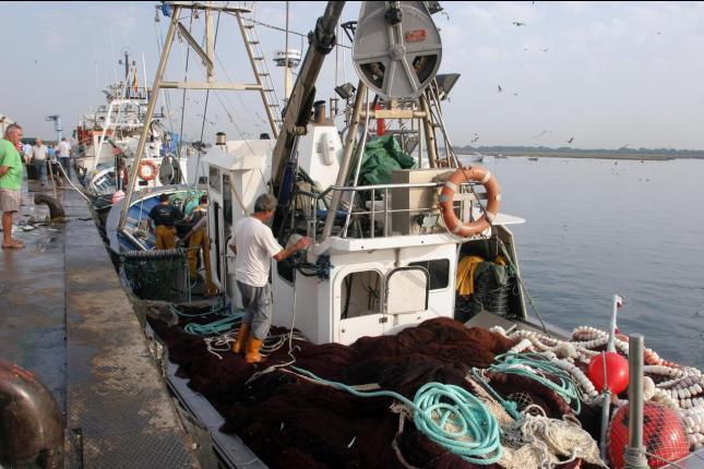 El Parlamento Europeo no prorrogará los acuerdos de pesca con Marruecos