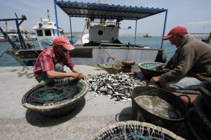 Gibraltar vuelve a expulsar a pescadores españoles de 'sus' aguas por faenar cerca del Peñón