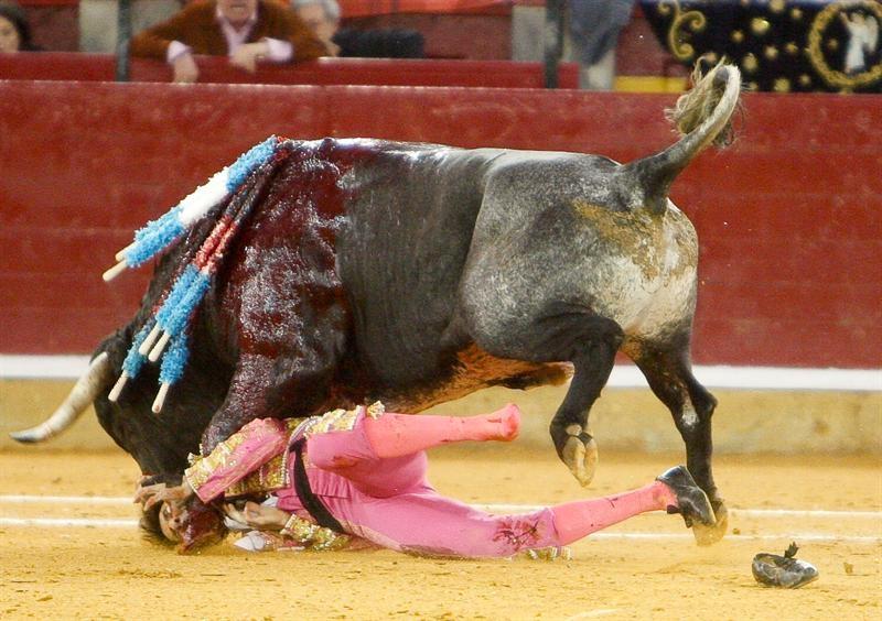 Juan Jos  233  Padilla     Torear  233   aunque sea con un parche en el ojo   Juan Jose Padilla Cornada