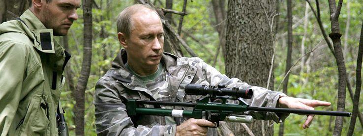 Putin legt betäubter Tigerin Halsband mit Sender an