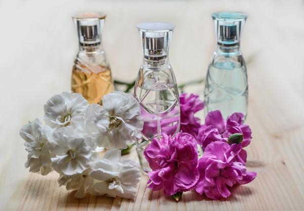 Catadeperfumes te invita a disfrutar de una experiencia sensorial completa