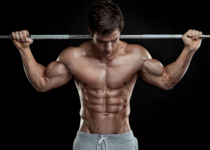 Diseñan técnica para saber mejor cómo funcionan músculos