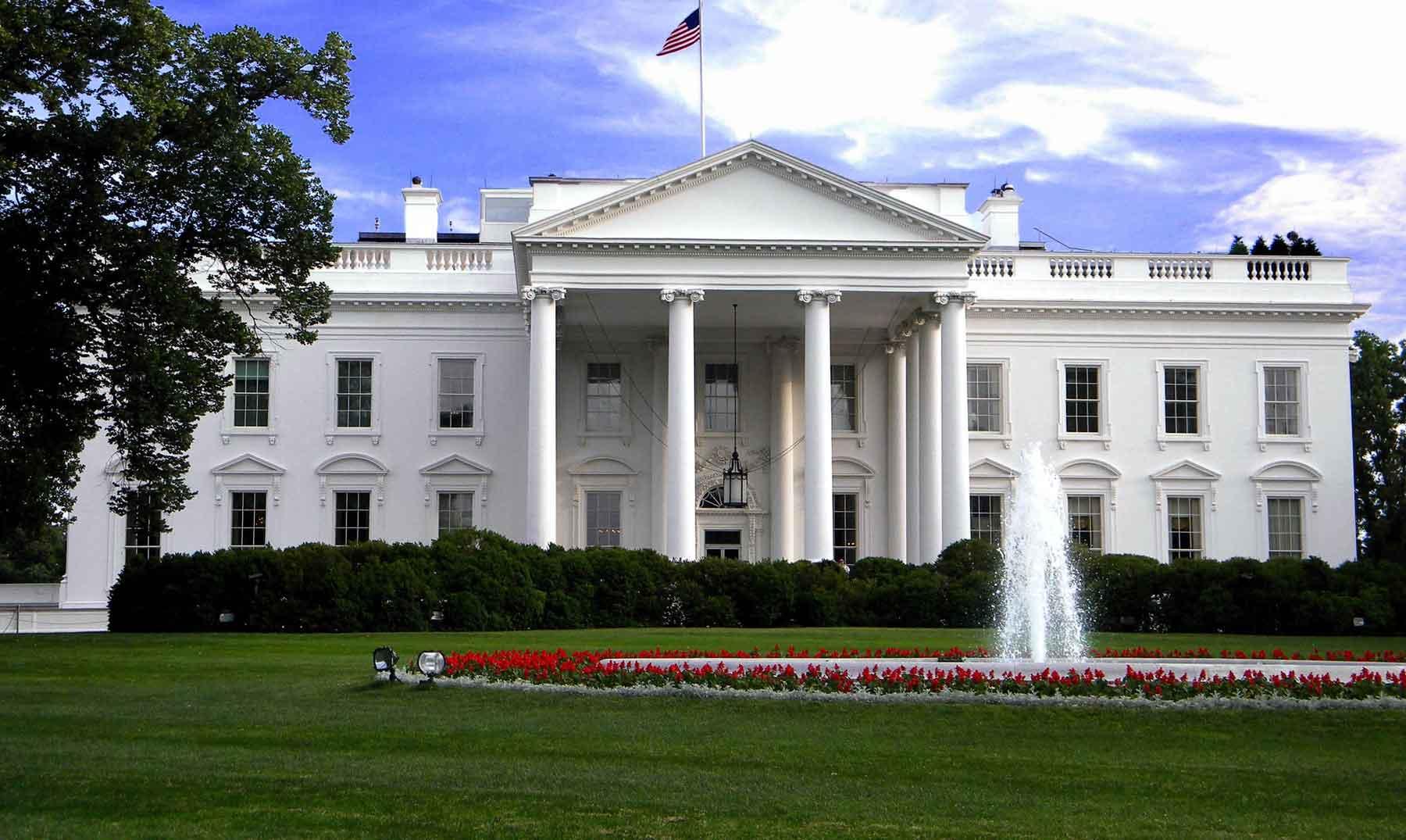 En la Casa Blanca también hay cucarachas, hormigas y ratones